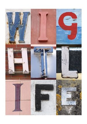 WIGHT LIFE, ISLE OF WIGHT, ACSII, VINTAGE LETTERS, LIMITED EDITION PRINT, FINE ART PRINT